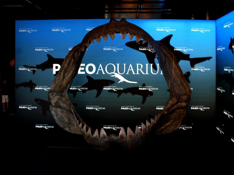 ABS Group - Paleoaquarium